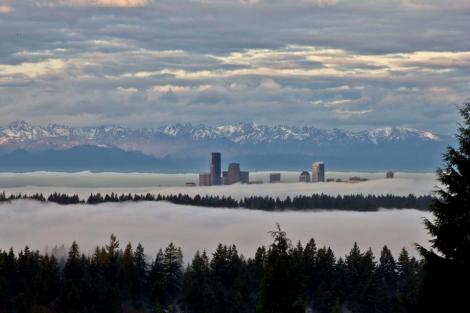 Seattle in a sea of clouds