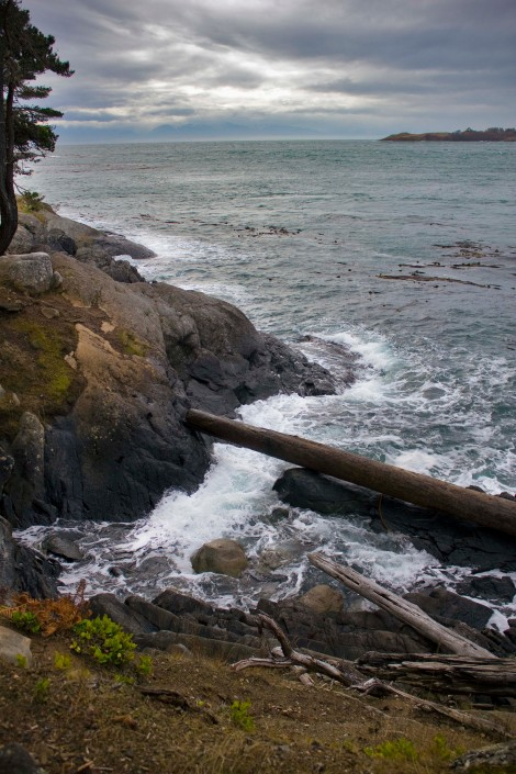 on the way to Shark Reef Sanctuary, Lopez Island