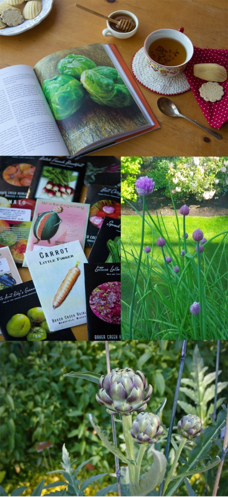 Reflections of gardens' past and seeds from Baker Creek Heirloom Seeds for my garden in 2012